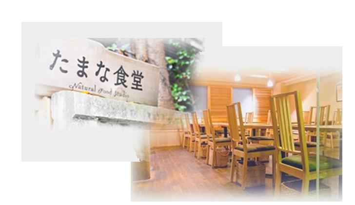 たまな食堂画像