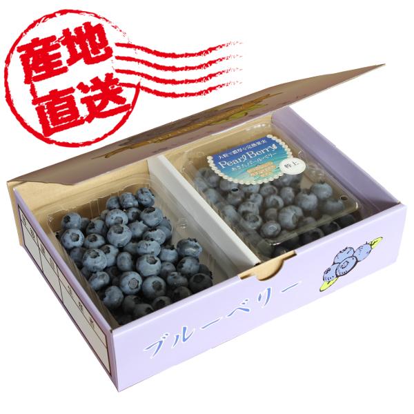 秋田県産 フレッシュブルーベリー あきたパールベリー