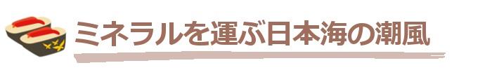 京丹後の環境1