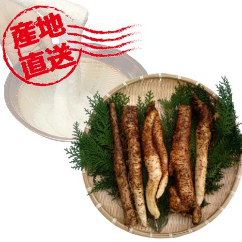 和歌山県産 米本さんの減農薬の自然薯