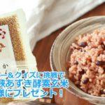 ツイッター懸賞かんたん酵素玄米桜仙峡あずきブレンド