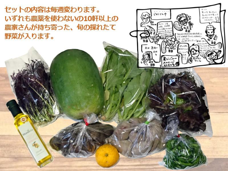 和歌山県産野菜セット内容は毎週変わります
