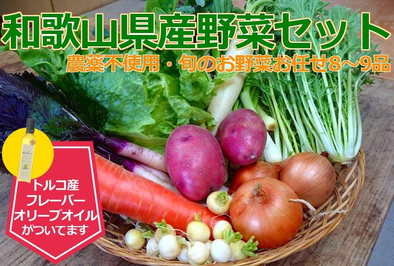 和歌山県産野菜セット