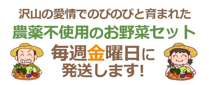 和歌山県産野菜セット毎週金曜日発送