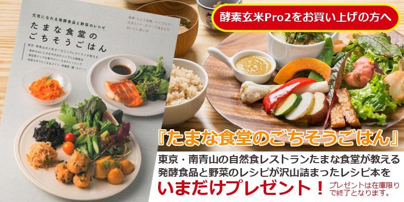 酵素玄米Pro2たまな食堂のごちそうごはんレシピ本プレゼント