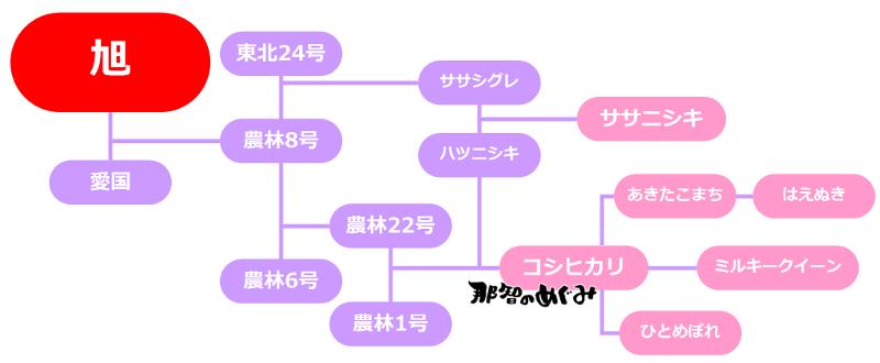 お米の系図