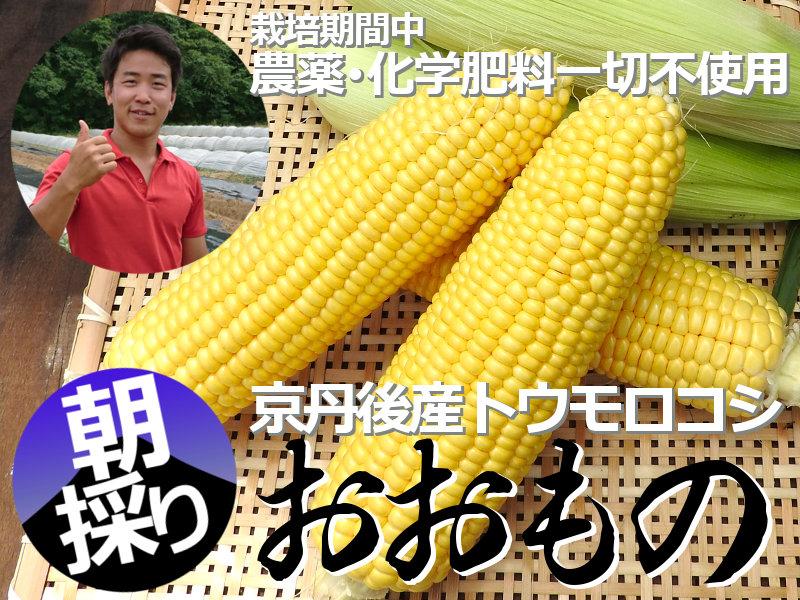 鶴さんのトウモロコシおおもの