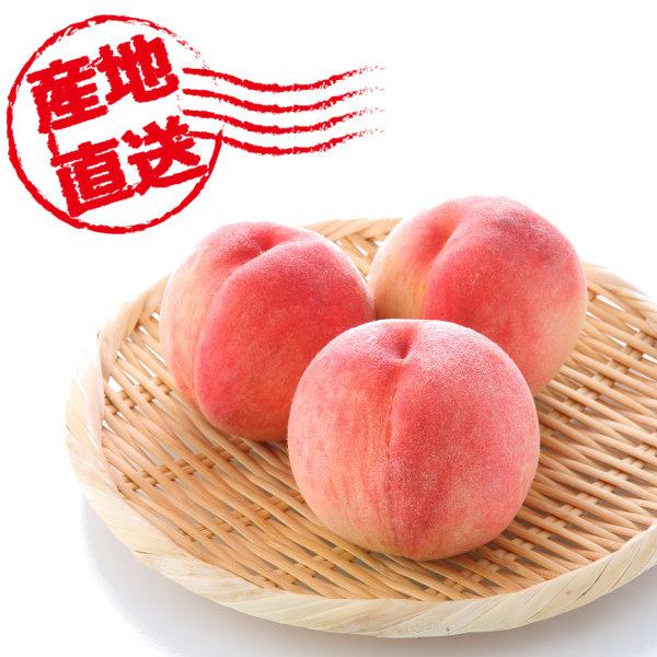 山梨県産 古屋さんの超減農薬の桃 白鳳|白桃