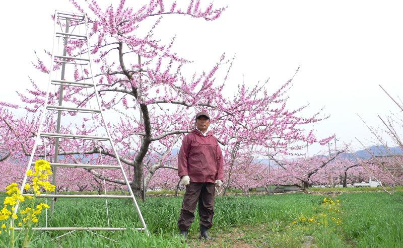 フルヤ農園古屋孝之さん
