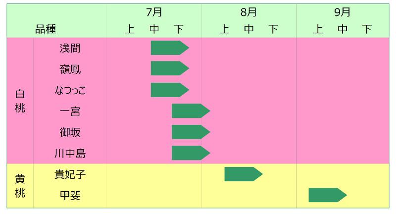 収穫発送スケジュール表
