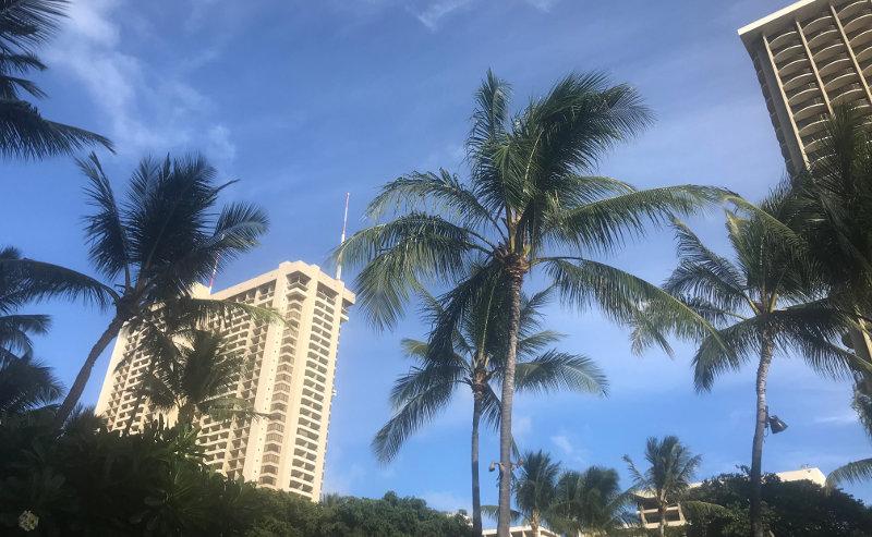山田先生のハワイ旅行