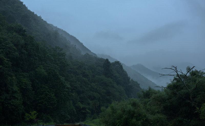 丹波篠山の朝霧