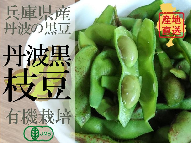 丹波篠山中島さんの黒枝豆