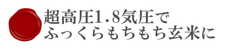 酵素玄米Labo超高圧1.8気圧