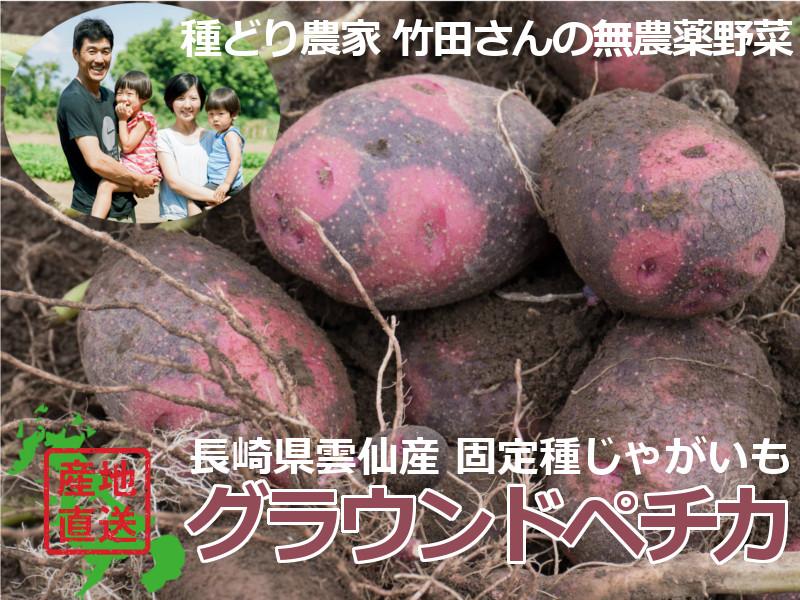 竹田さんの無農薬野菜グラウンドペチカ