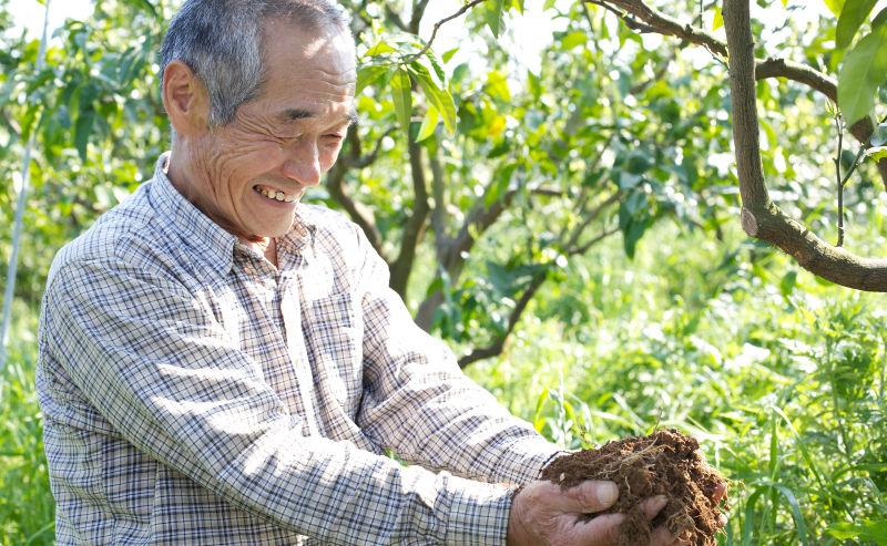 有機栽培に取り組む佐藤睦さんの農場
