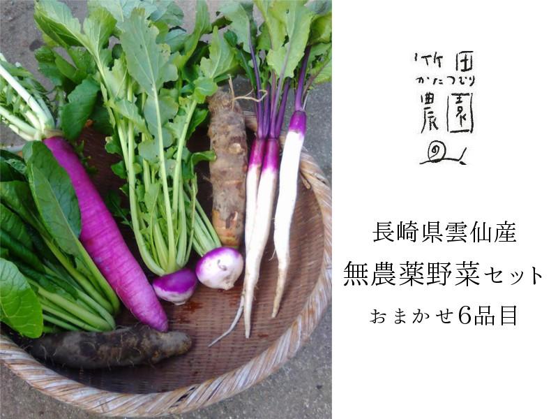 竹田かたつむり農園無農薬野菜セット