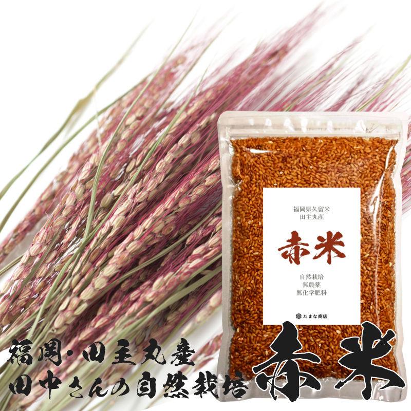 福岡県久留米市田主丸産自然栽培の赤米