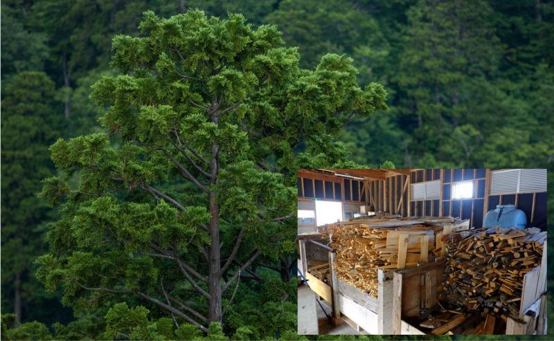 炊き上げには環境に配慮した青森ひば等の県産木を使用しています