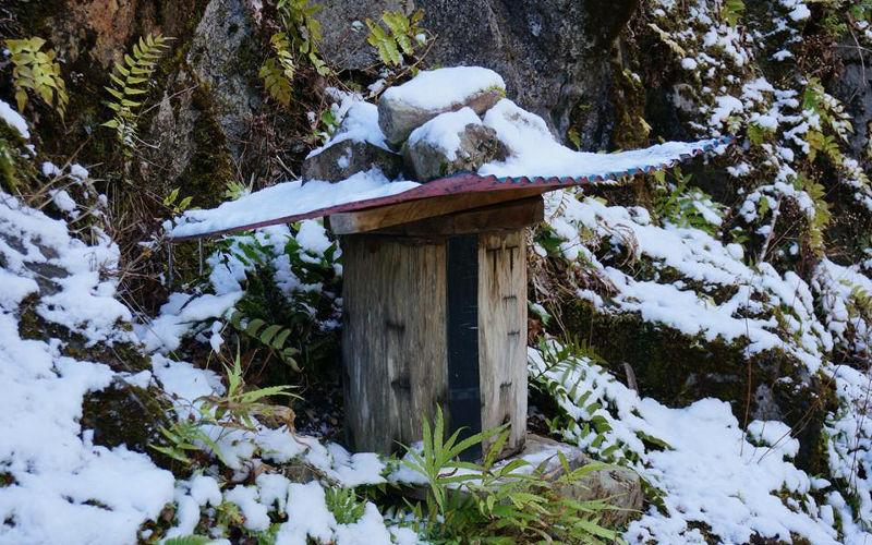 熊野はちみつニホンミツバチの巣箱ゴーラ