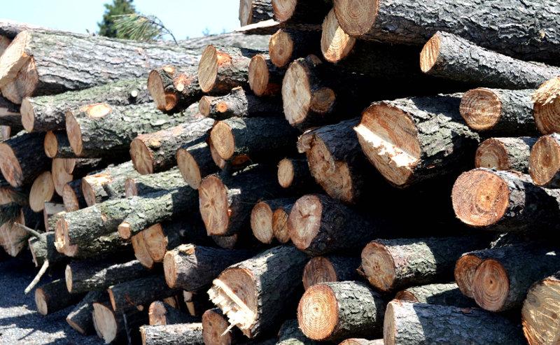 赤松材の経木の良さ
