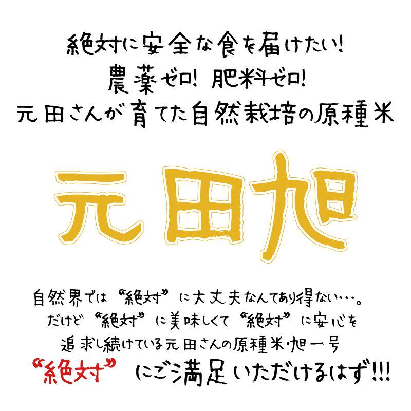 元田さんが育てた自然栽培の原種米元田旭