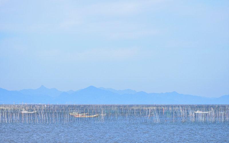 有明海は日本一の海苔養殖を誇ります