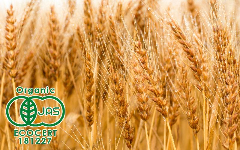 有機栽培の食材だけを使用