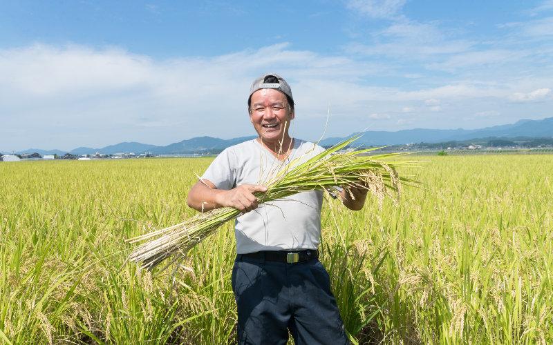 熊本県産元田さんの旭一号自然栽培10年以上元田旭