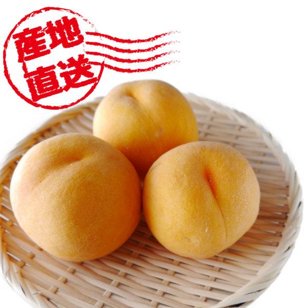 山梨県産 古屋さんの超減農薬の桃 黄桃
