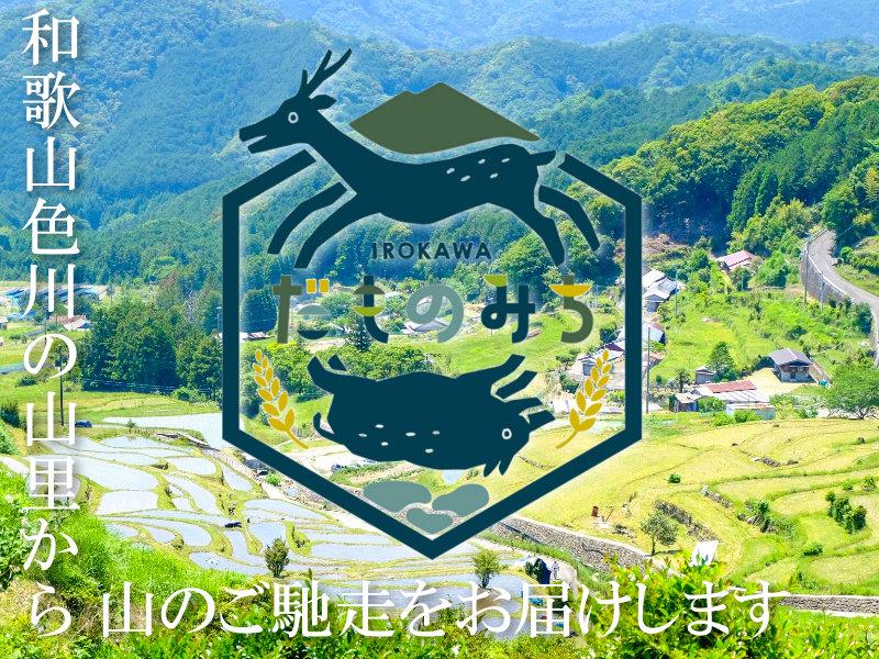 和歌山色川だものみちジビエ