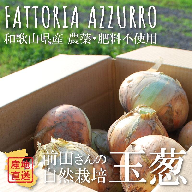 FATTORIA AZZURRO 前田さんの自然栽培玉ねぎ