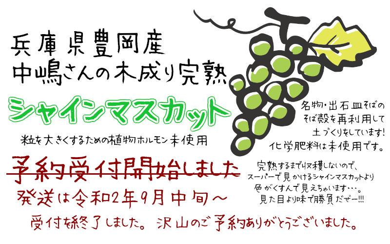 中嶋さんのシャインマスカット受付を終了しました