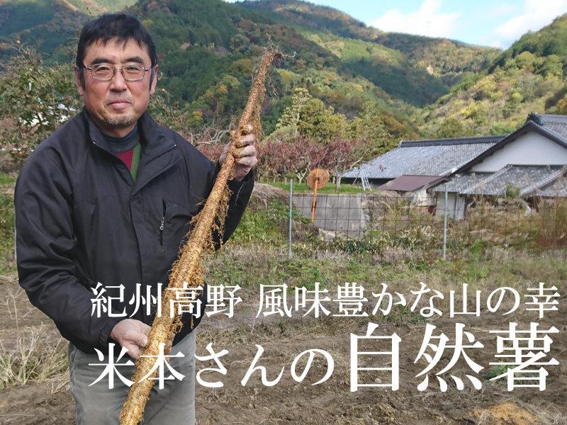 米本さんの自然薯