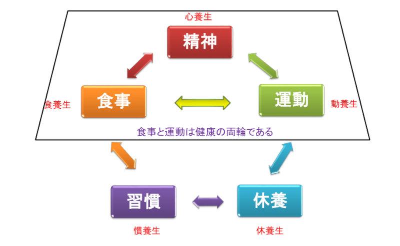 5つの養生訓