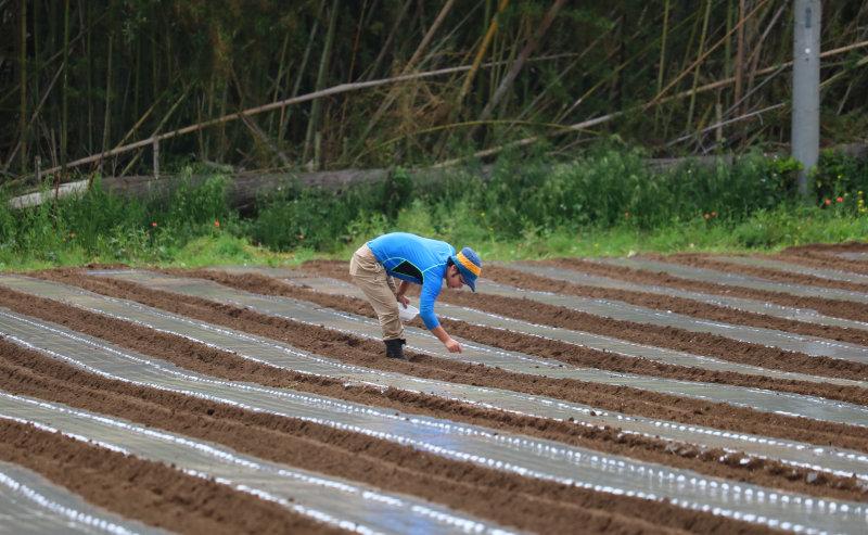 あんばい農園体験学習型農園
