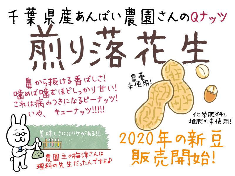 千葉県産あんばい農園さんのQナッツ煎り落花生