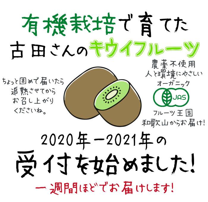 古田さんのキウイフルーツ受付を始めました
