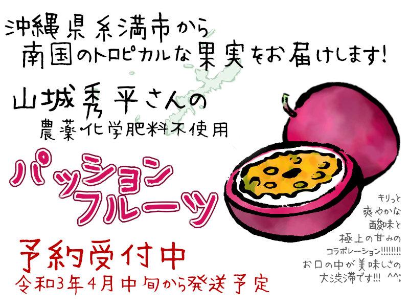 山城秀平さんのパッションフルーツ