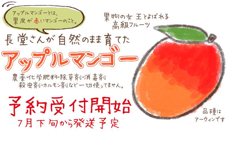 アップルマンゴー受付開始
