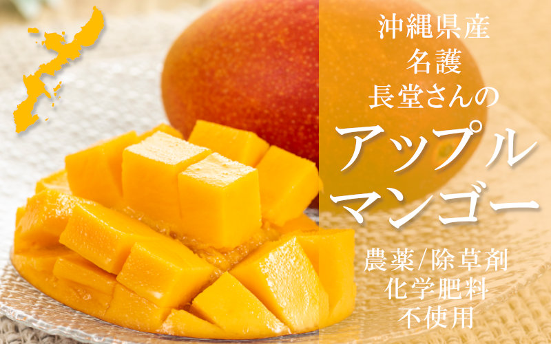 沖縄県産アップルマンゴー