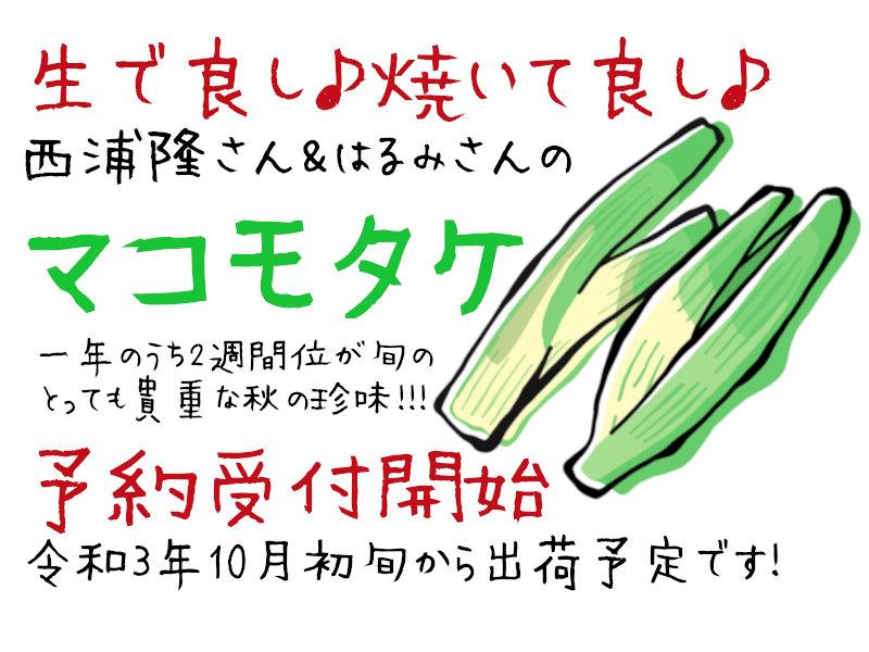 マコモタケ予約受付