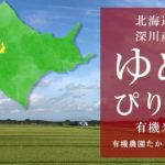 北海道深川産ゆめぴりか有機米