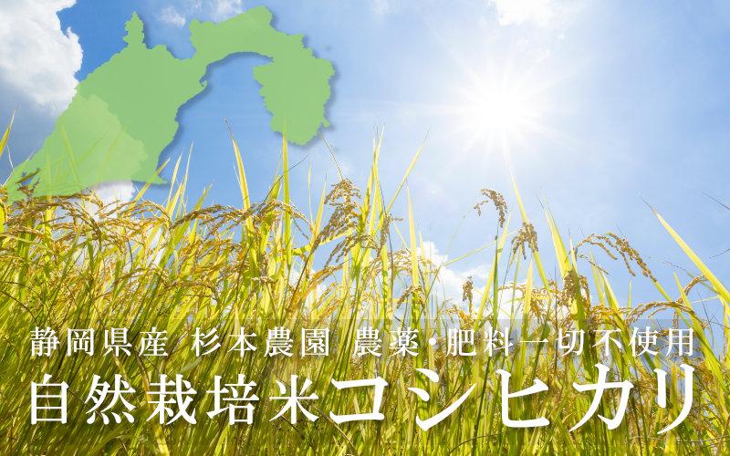 静岡県産自然栽培米コシヒカリ